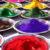 Stężenie objętościowe pigmentów (SOP)